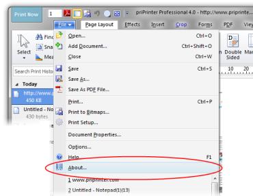 priPrinter - How to Enter Serial Number